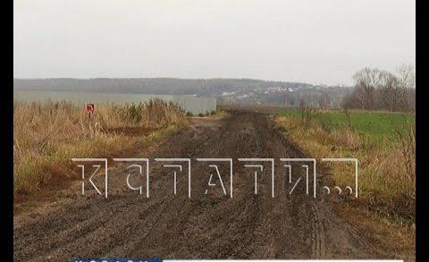 Дорога из куриного помета появилась в Павловском районе