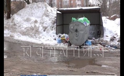 За расчистку неубранных мусорных площадок взялись городские власти