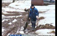 Ловушка абсурда — десятки жилых домов построены на месте скотомогильника сибирской язвы