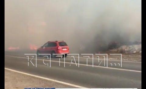 Поджог травы едва не уничтожил поселок Новинки