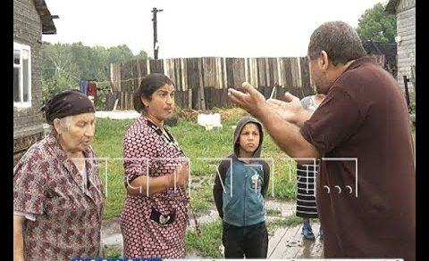 Чтобы выгнать соседей со спорной земли, житель деревни Ольгино затопил их навозом