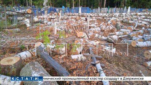 Десятки могил, разгромленных во время благоустройства — подрядчики назвали неизбежными жертвами