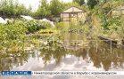 Коммунальная катастрофа в Балахне превратила огороды в болото, в котором вязнут их владельцы