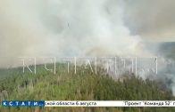 Леса недогоревшие в 2010 году, стали топливом для пожаров 2021 года
