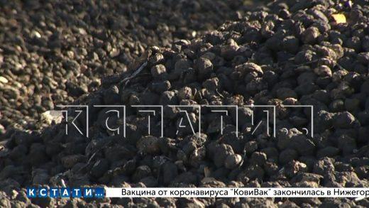 Сотни тонн картофеля сгноили на опушке леса в Шатковском районе