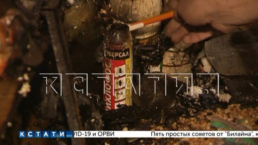 В квартире «плюшкиной», захламившей своё жильё мусором и стаей кошек — произошел взрыв